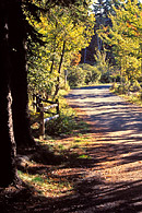 This Carriage Road near Eagle Lake provides a peaceful setting for walking, hiking or jogging.