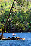 Fishing is allowed on Eagle Lake but a Maine fishing license is required.