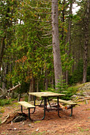 There are various picnic spots in secluded semi-private settings.